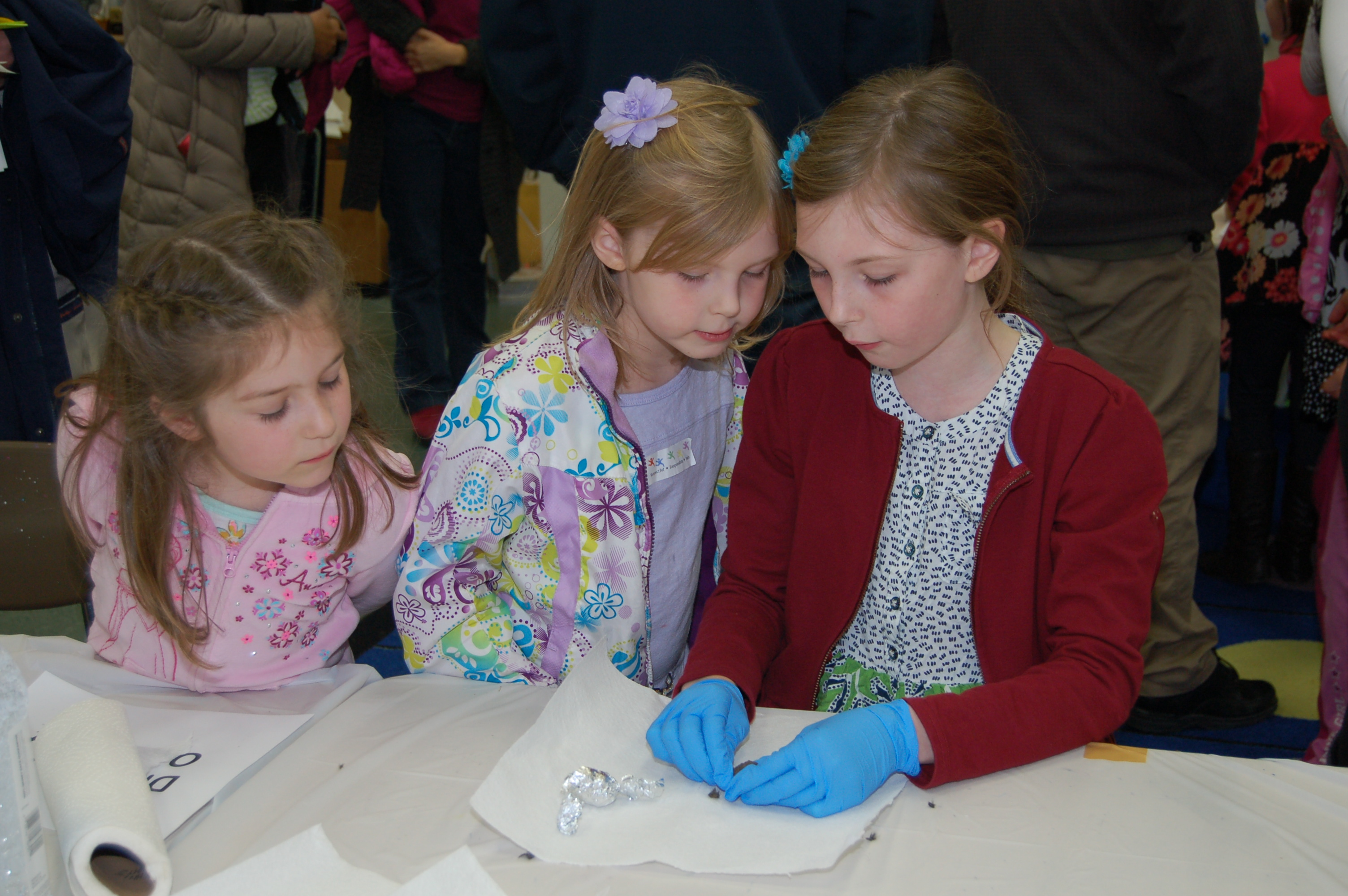 3 elementary students dissecting an owl pellet